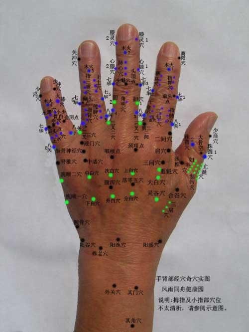 手部穴位综合示意图